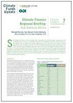 Regional briefing: Sub-Saharan Africa